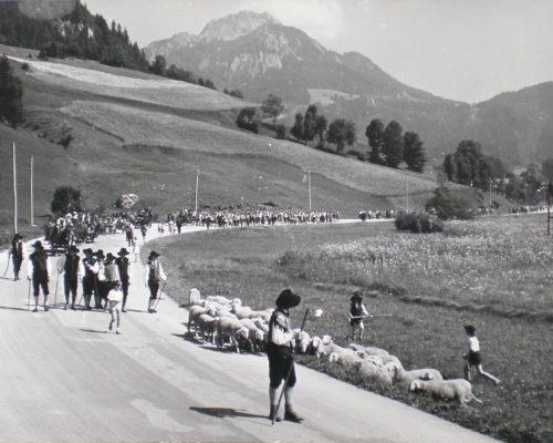 Ovcarski-bal_01_015-1958-1200×861