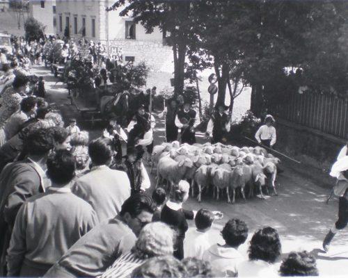 Ovcarski-bal_01_016-1958-1200×768